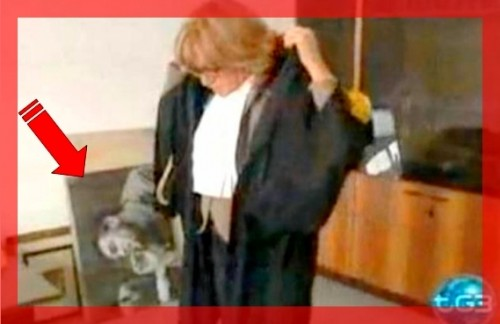 magistrato ANNA ARGENTOeChe Guevara.jpg